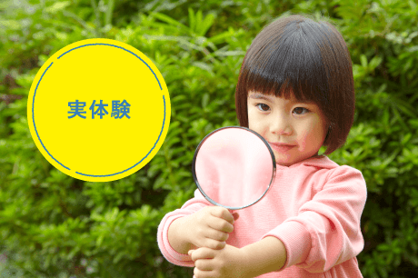 Z会 幼児コース 実体験